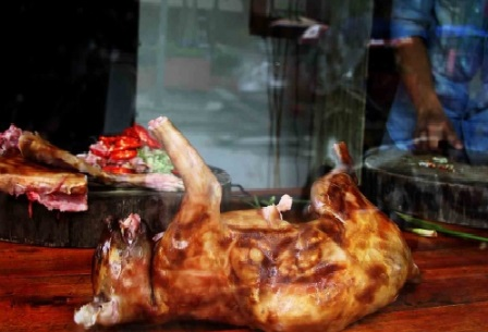 daging kucing